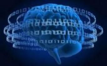 İnternet Bağımlılıkları ve Zihinsel Fonksiyonlar