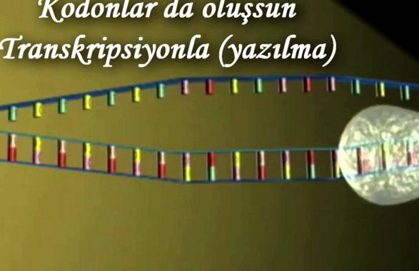 Şarkılarla Biyoloji