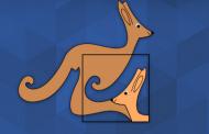 Kanguru Matematik Sınavı 2016