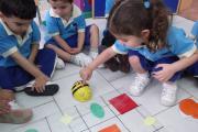 Okul Öncesinde Bee-Bot ile Hem Kodluyoruz Hem Öğreniyoruz..